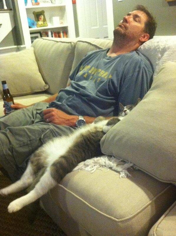 Когда кот похож на своего хозяина