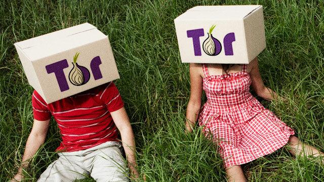 TOR признали крупнейшим посредником распространения детской порнографии.