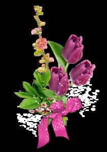 http://img-fotki.yandex.ru/get/9480/102699435.a95/0_c4eee_d9288d79_M.png