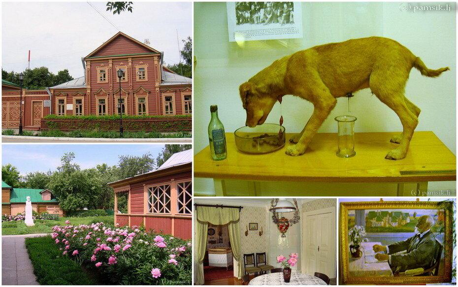 фотографии дом музей