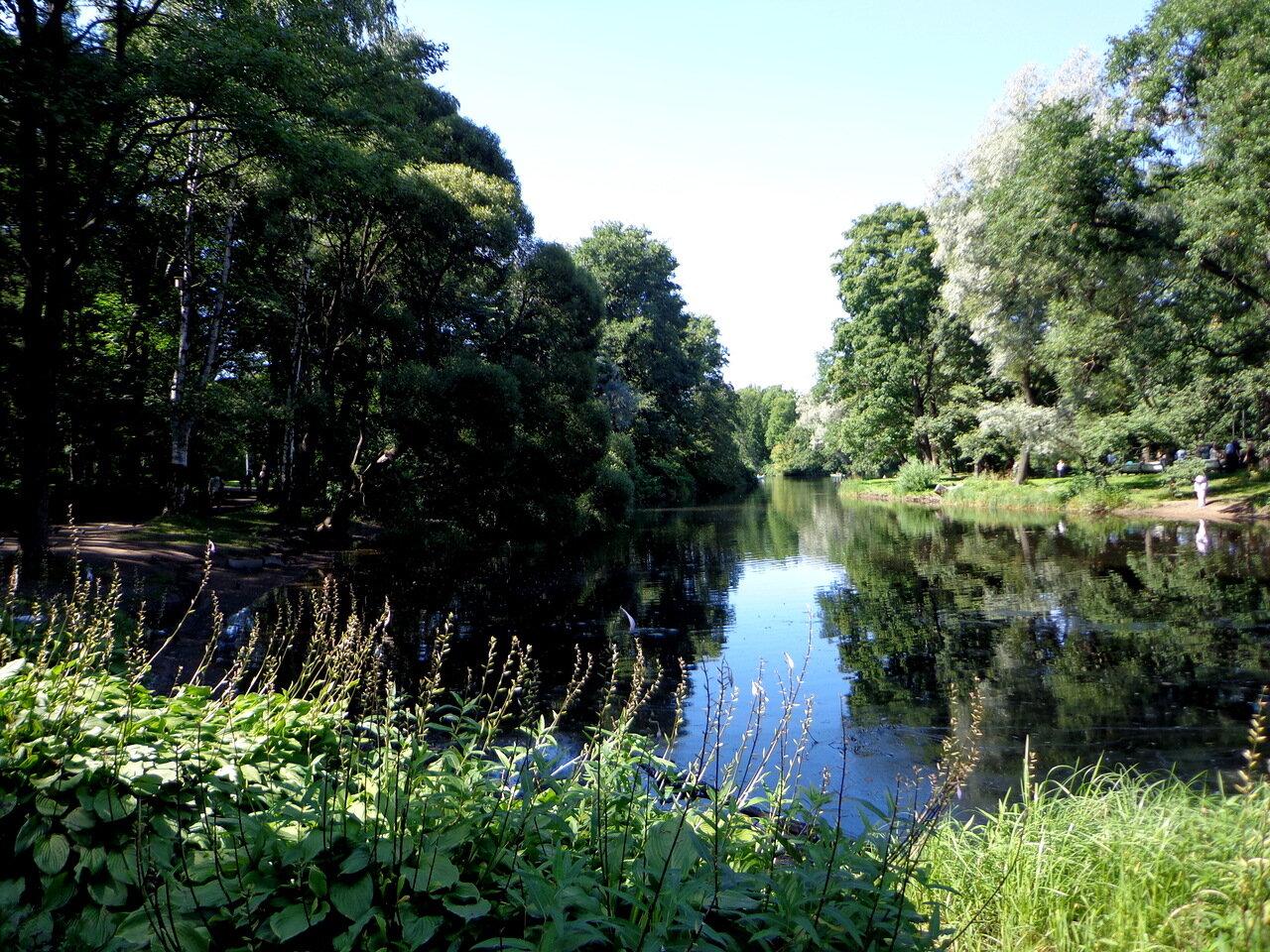 Парковые пруды на Елагином острове.
