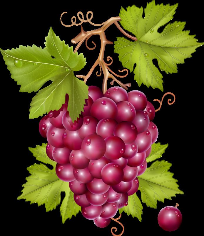 овощи-фрукты (6).png