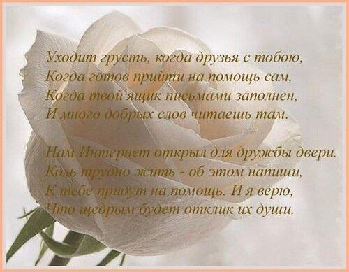Белая роза. Уходит грусть, когда друзья с тобою открытка поздравление картинка