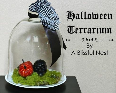 Хэллоуинские террариумы