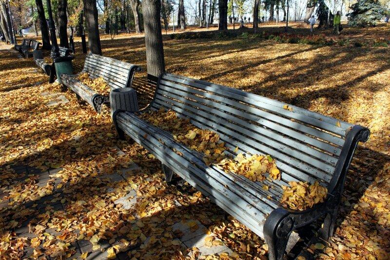 Опавшая листва на парковых скамейках