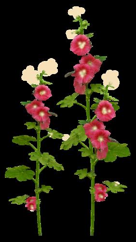 Плейкаст букет из полевых цветов