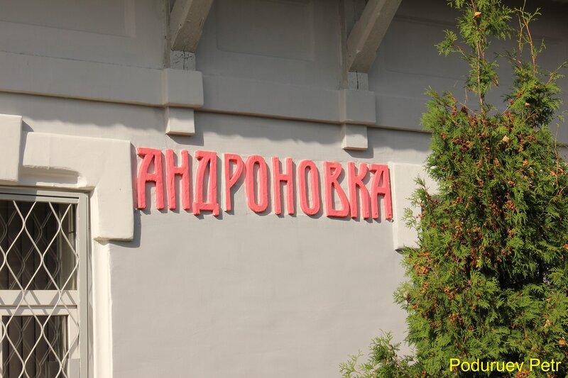 Станция Андроновка