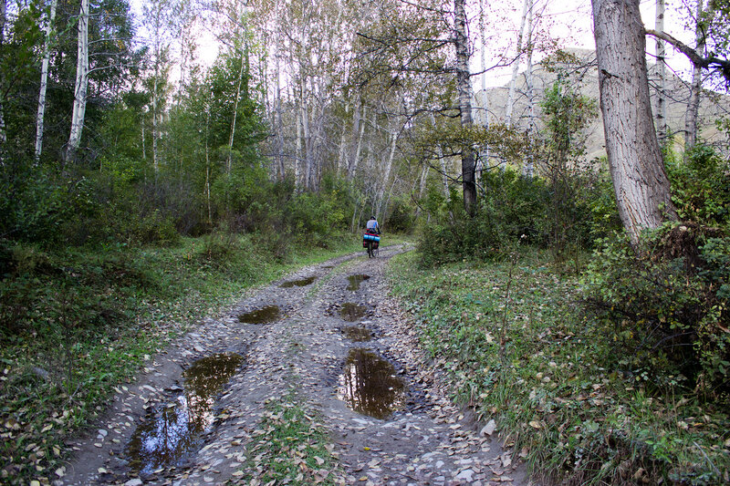 дорога вдоль реки Маралиха