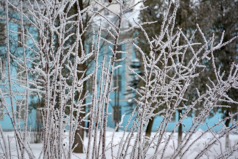 вновь зима2