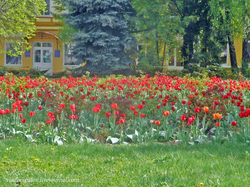 2013-05-02 Житомир день другий_ (69).JPG