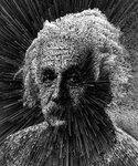 Albert_02.jpg