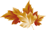 Осень112