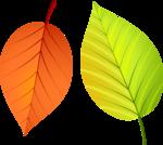 Осень127