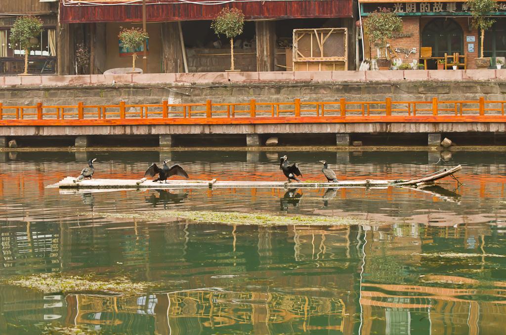 19. Рыбаки... Поездка в Фэнхуан из Чжанцзяцзе. Отчет об отдыхе в Китае дикарями.