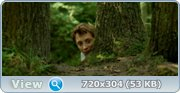 http//img-fotki.yandex.ru/get/95/46965840.10/0_d944b_be2e099a_orig.jpg