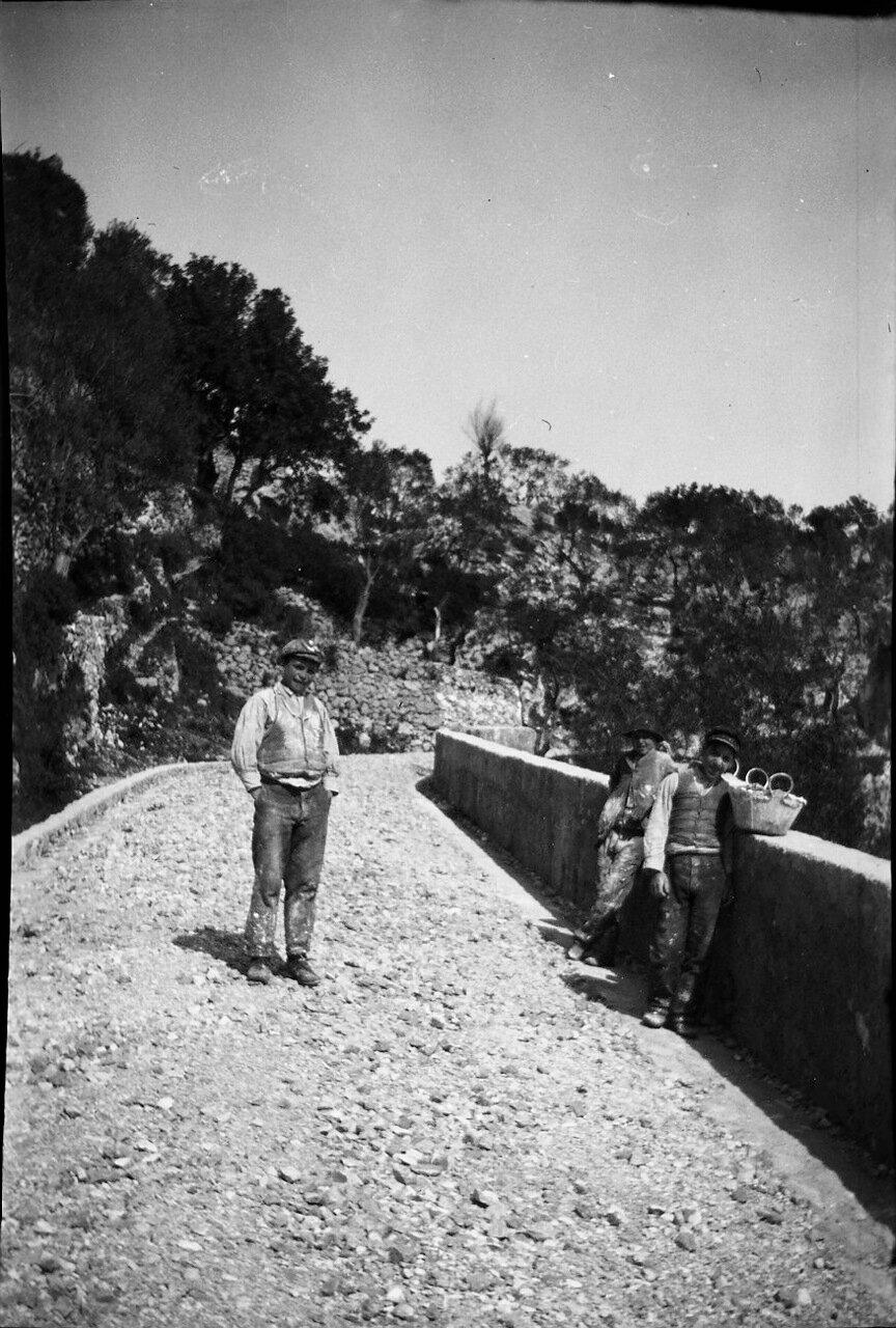 1900. Три мальчика