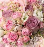 roses (5).jpg