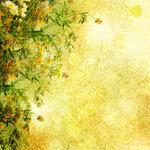 Flowers (3).jpg