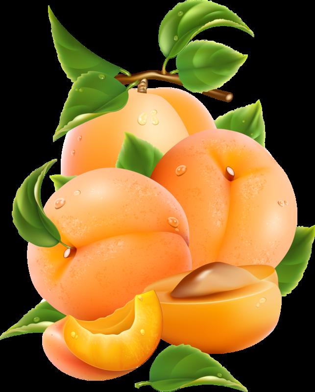 овощи-фрукты (2).png