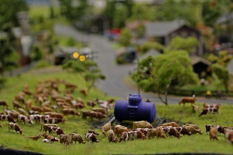 Гранд макет: стадо рыжих пятнистых коров пасётся на лугу рядом с цистерной для водопоя