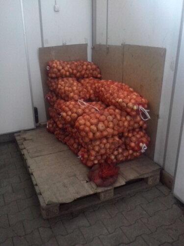Склад овощей и фруктов