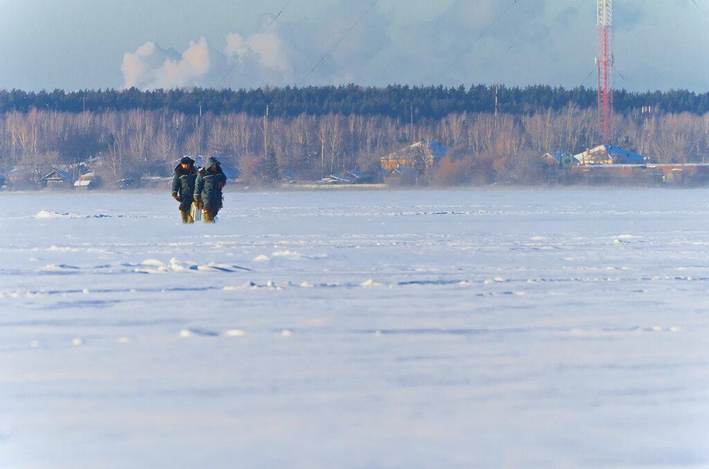 Странно, почему группами меньше трёх они стараются не передвигаться? Боятся замерзнуть? Фотоаппарат Nikon D5100, телевик Nikon 70-300mm f/4.5-5.6G.