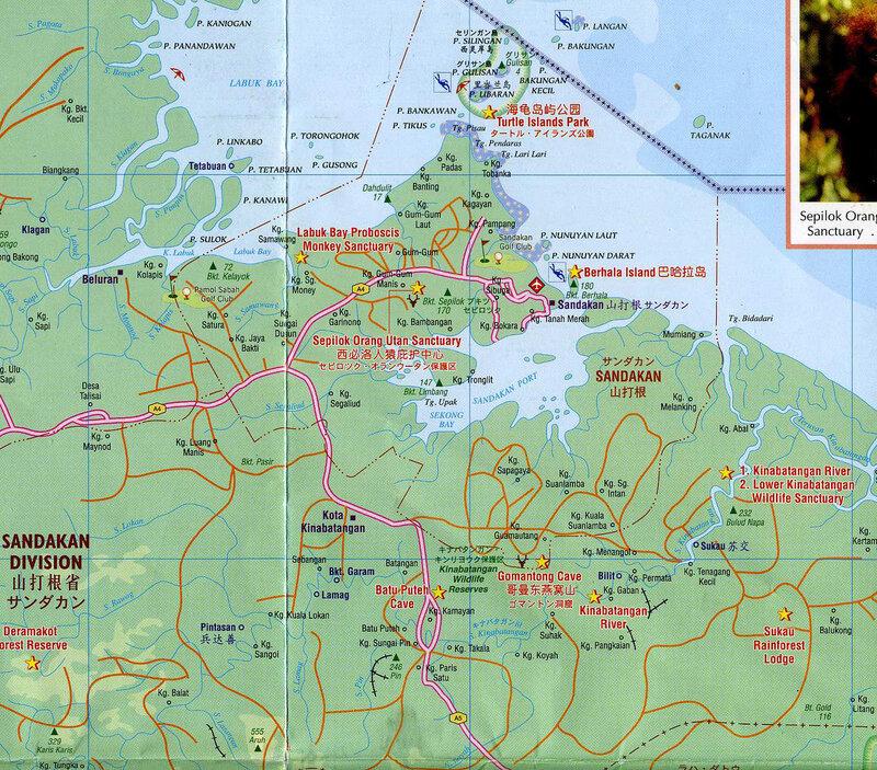 Маршрут по Борнео, Сукау и Черепашьи острова