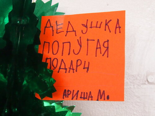 Еще одно письмо Деду Морозу