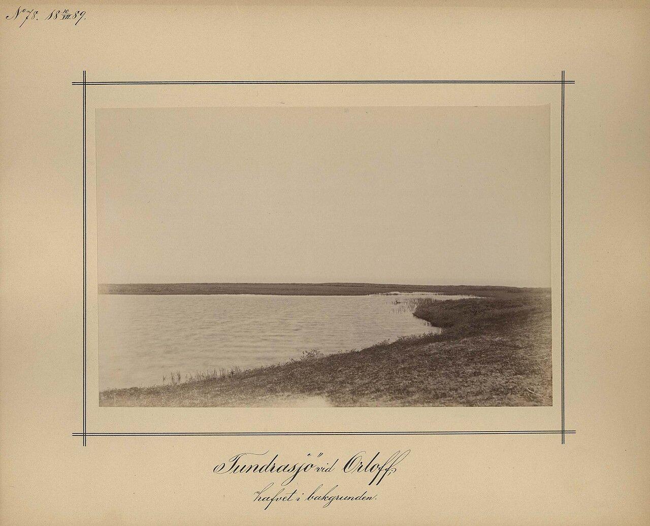10.7.1889. Тундровое озеро вблизи Орлова на фоне моря
