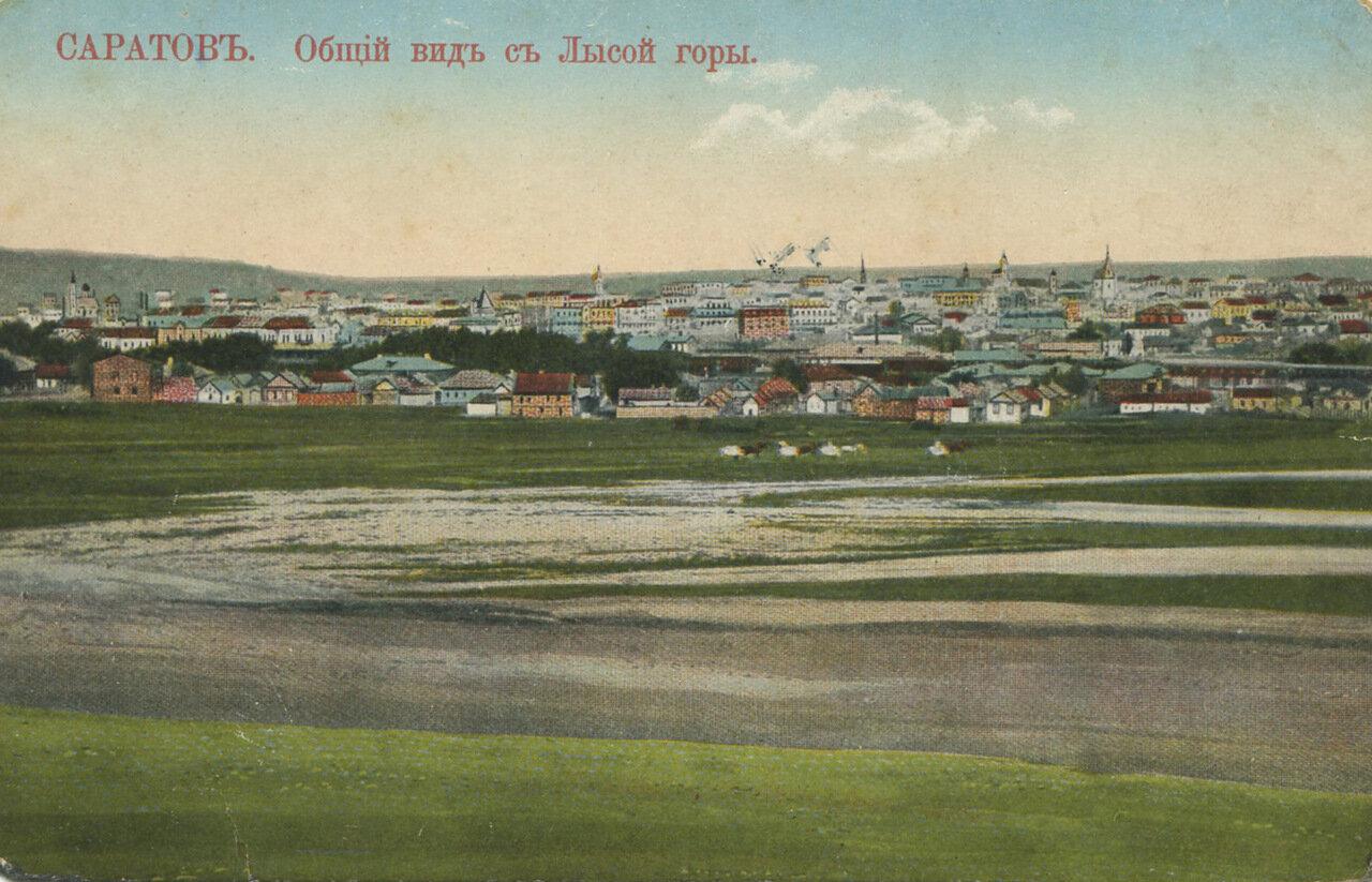 Общий вид на город с Лысой горы