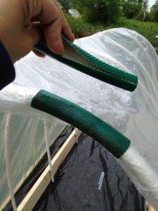 Заморозки - лето 2014 - Спасаем посадки-Самодельное крепление на дугу из поливочного шланга