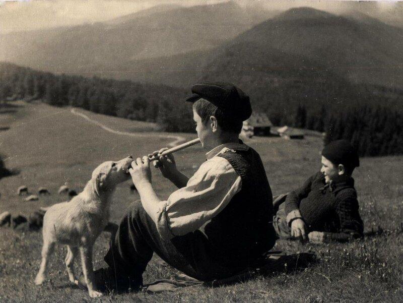 Румыния 1950-е - чебаны.jpg