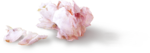 StudioMix45-PinkSugarDaydream-ldavi-rose2b-groundperspective.png