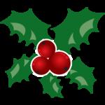 17_Christmas (50).png