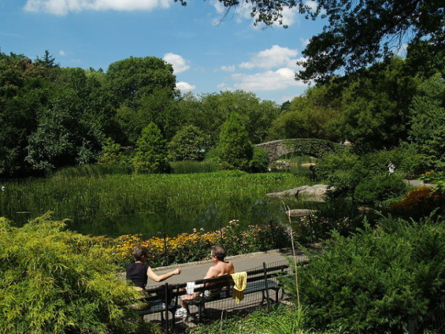Центральный парк   зелёные лёгкие Манхэттена