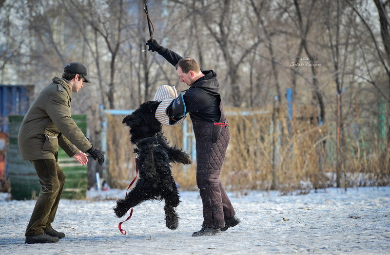 http://img-fotki.yandex.ru/get/9489/22682307.fd/0_b68ec_2c163c96_XL.jpg