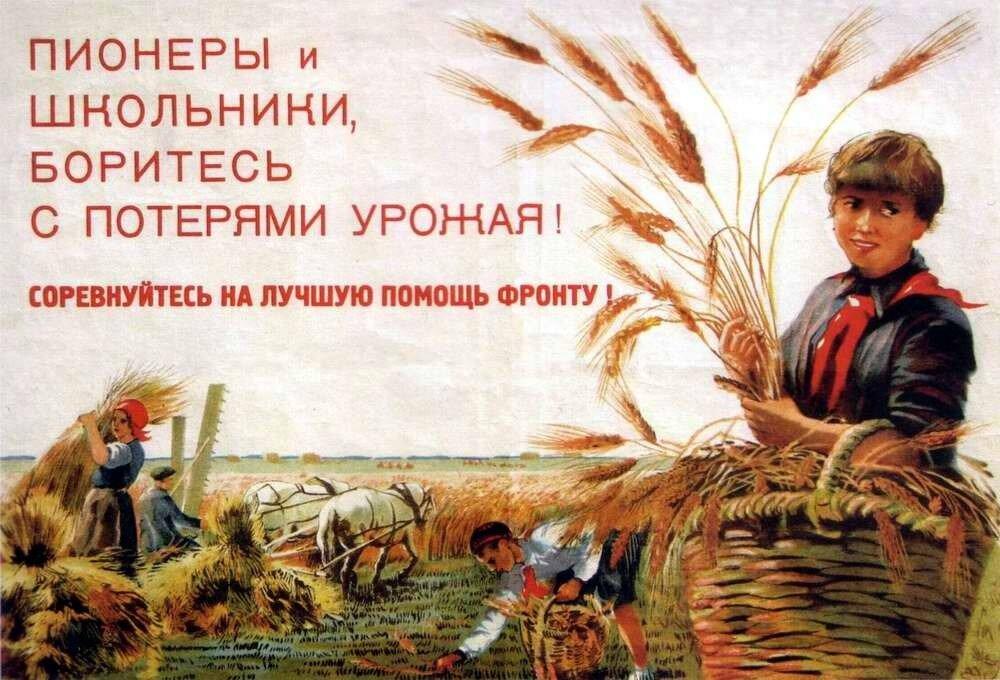 Пионеры и школьники, боритесь с потерями урожая! Соревнуйтесь на лучшую помощь фронту