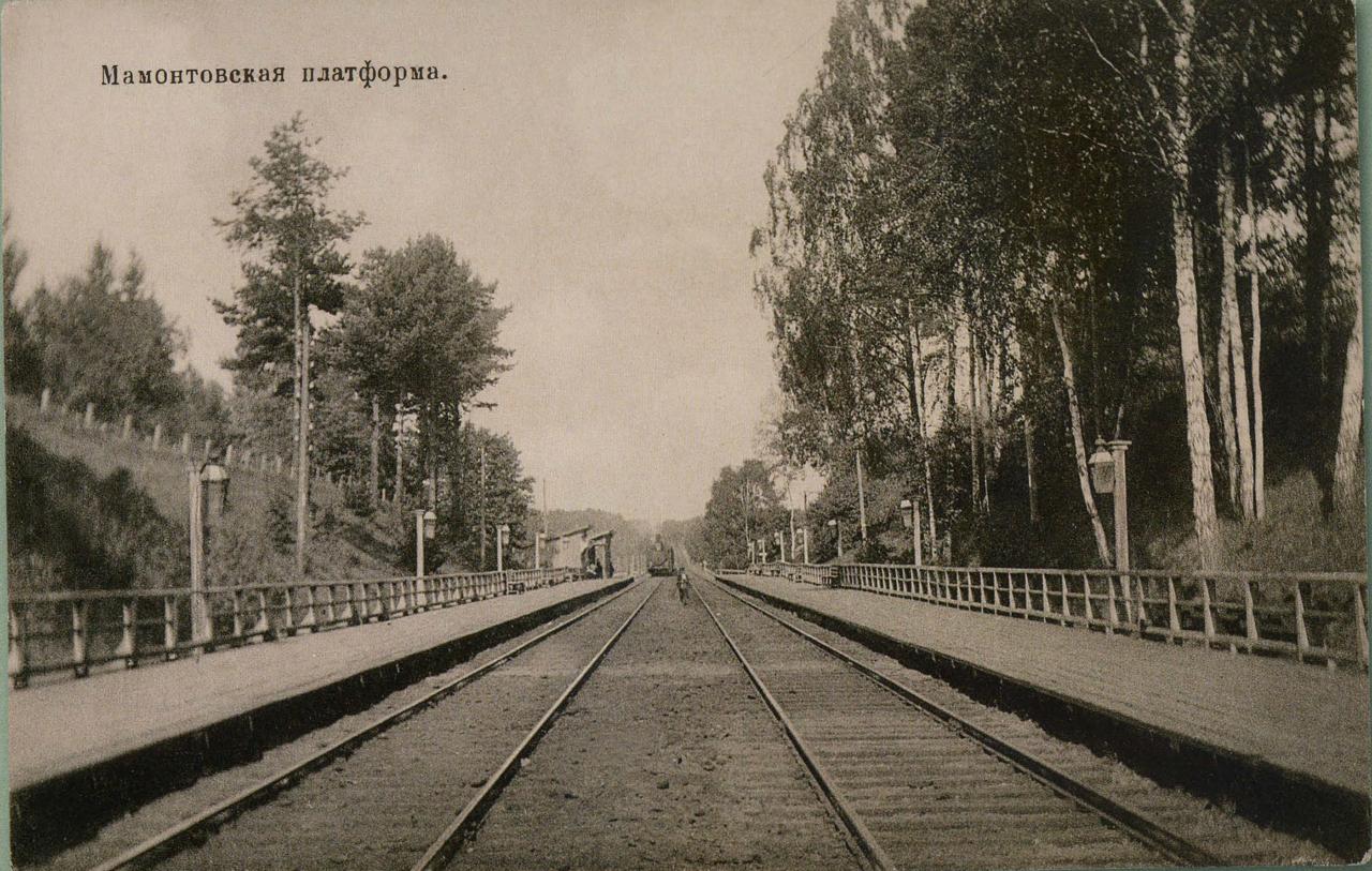 Окрестности Москвы. Мамонтовка. Платформа