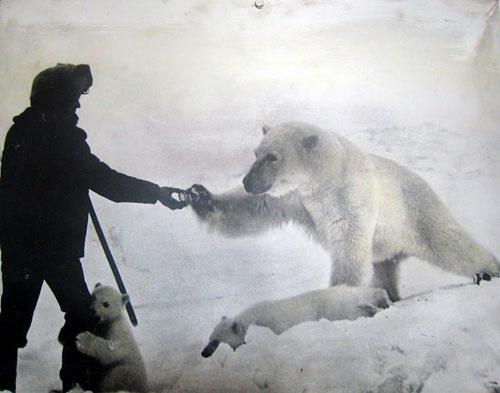 С Днем Полярника! Полярник и белый медведь
