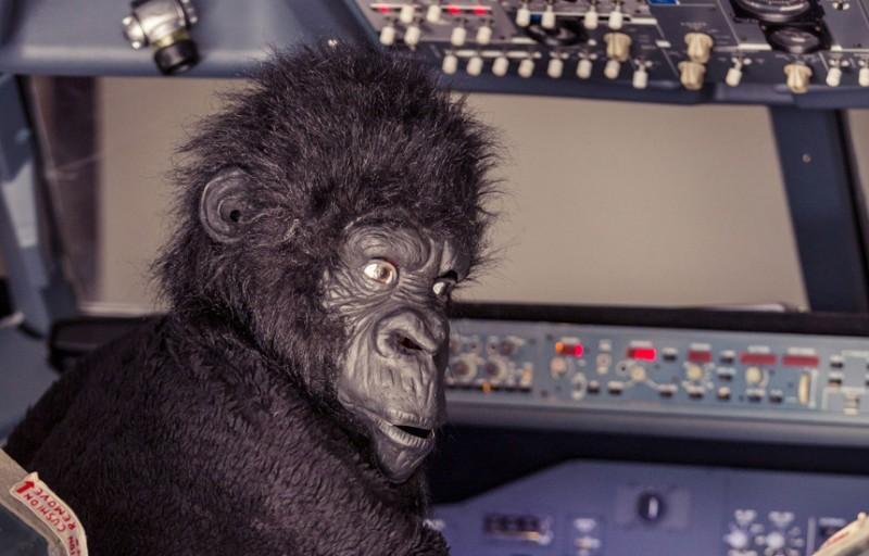 Радиошутки У пилотов есть доступ к громкой связи, они могут делать любые объявления и частенько этим