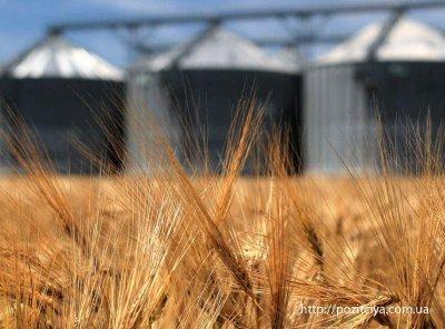 Украина продаст заграницу около 40 млн тонн зерна