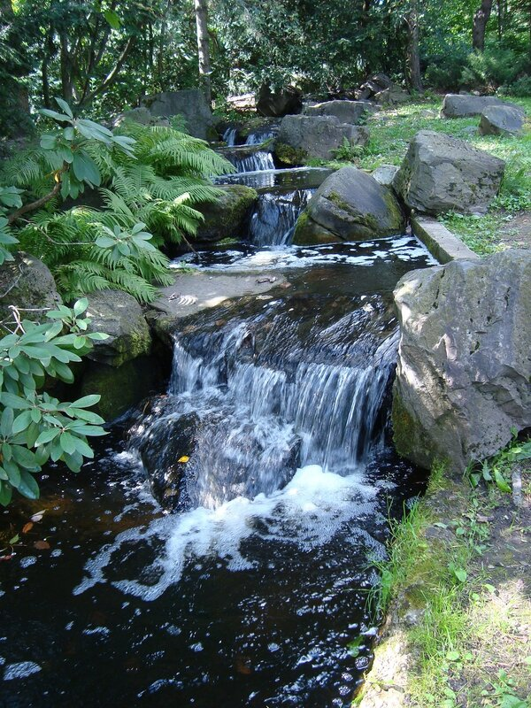 Ручей. Японский сад.