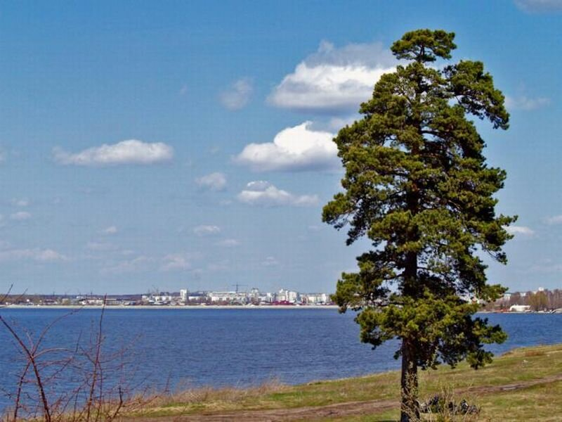 Вид на Челябинск (19.07.2013)