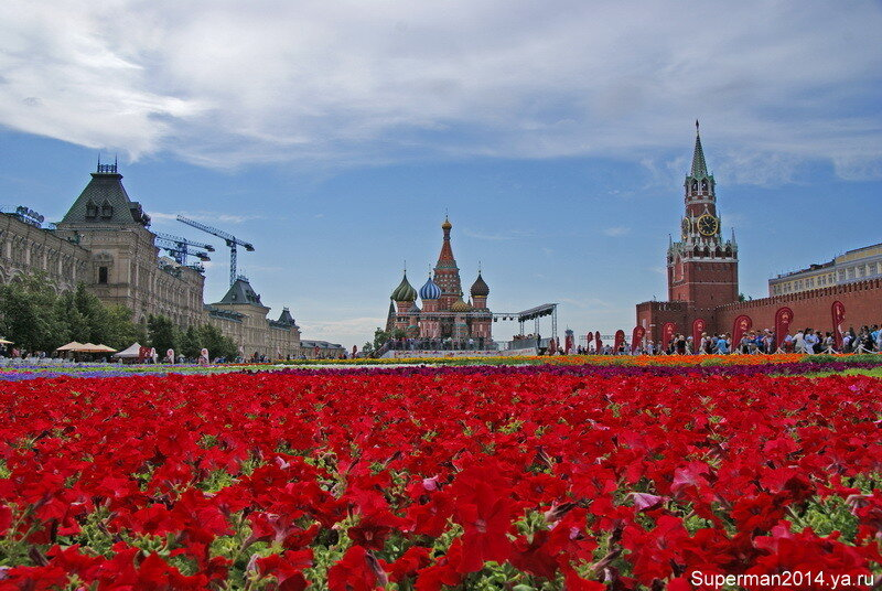 Красная, Красная площадь