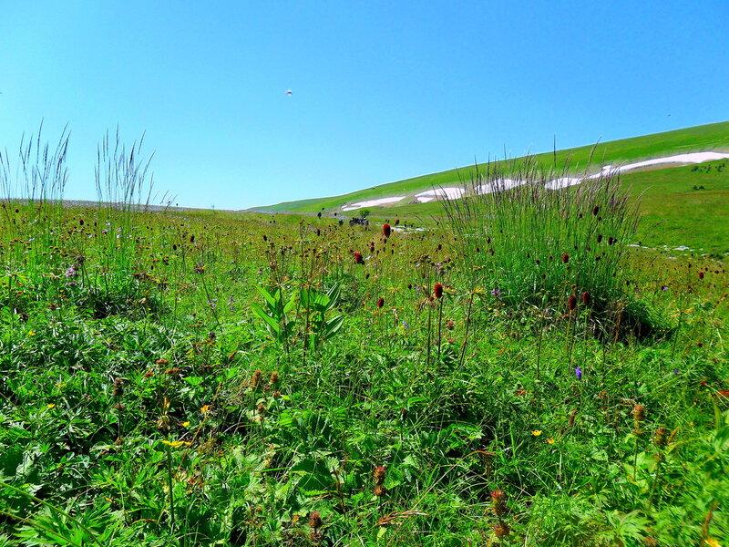 У трав и снегов, Фото туристическое
