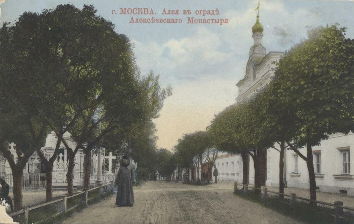 Алексеевский монастырь. Аллея в ограде монастыря