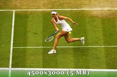 http://img-fotki.yandex.ru/get/9492/14186792.3a/0_d978b_75447d0e_orig.jpg