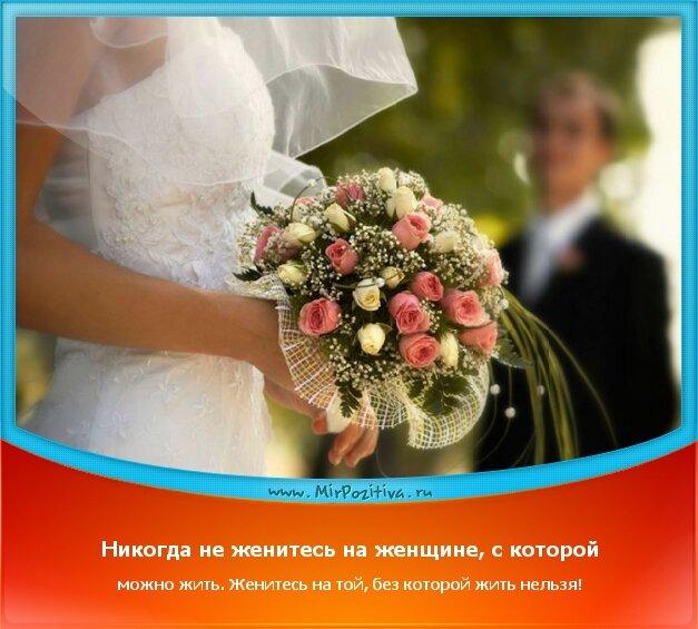 позитивчик дня: Никогда не женитесь на женщине, с которой можно жить. Женитесь на той, без которой жить нельзя!