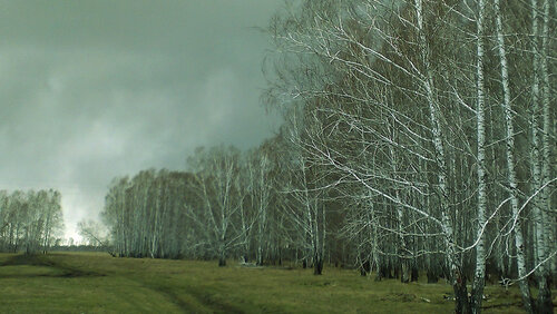 Первые приметы весны в Куйбышевском районе, Аспект
