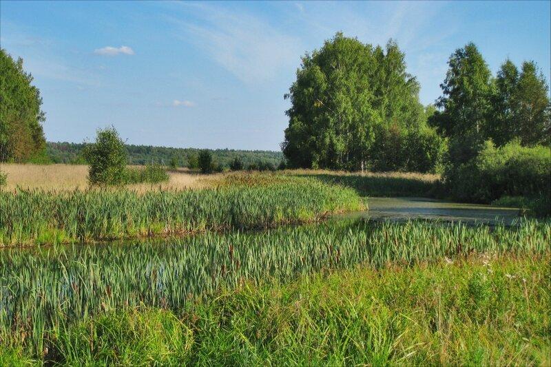 Пруд на поле у Рождествено-Суворово